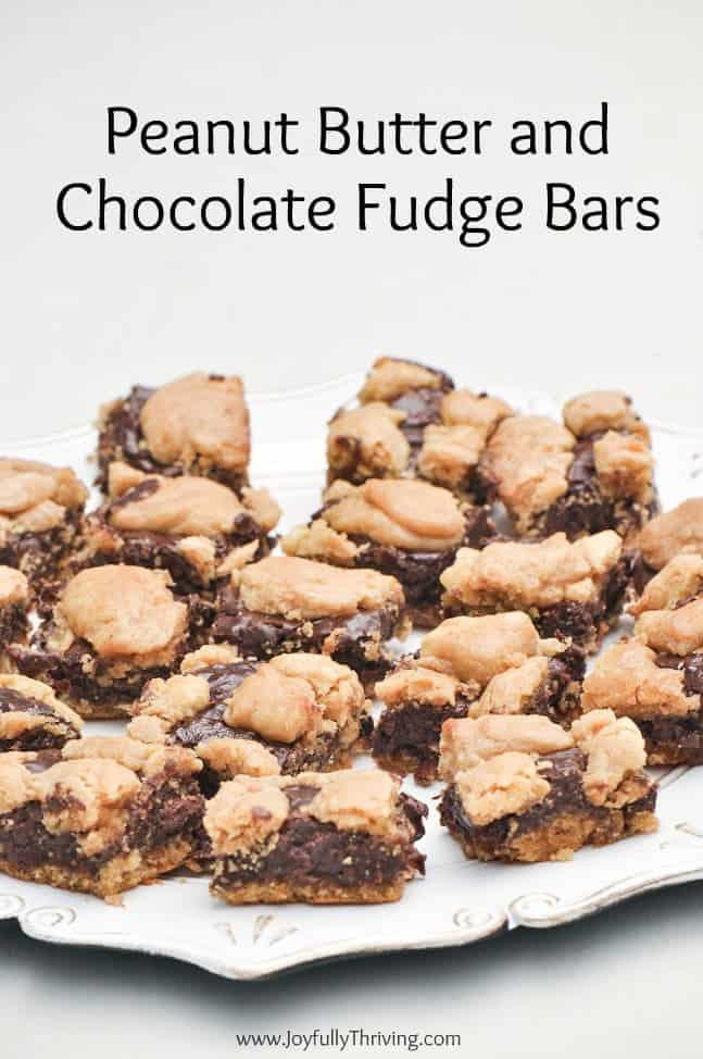 Peanut Butter and Chocolate Fudge Bars