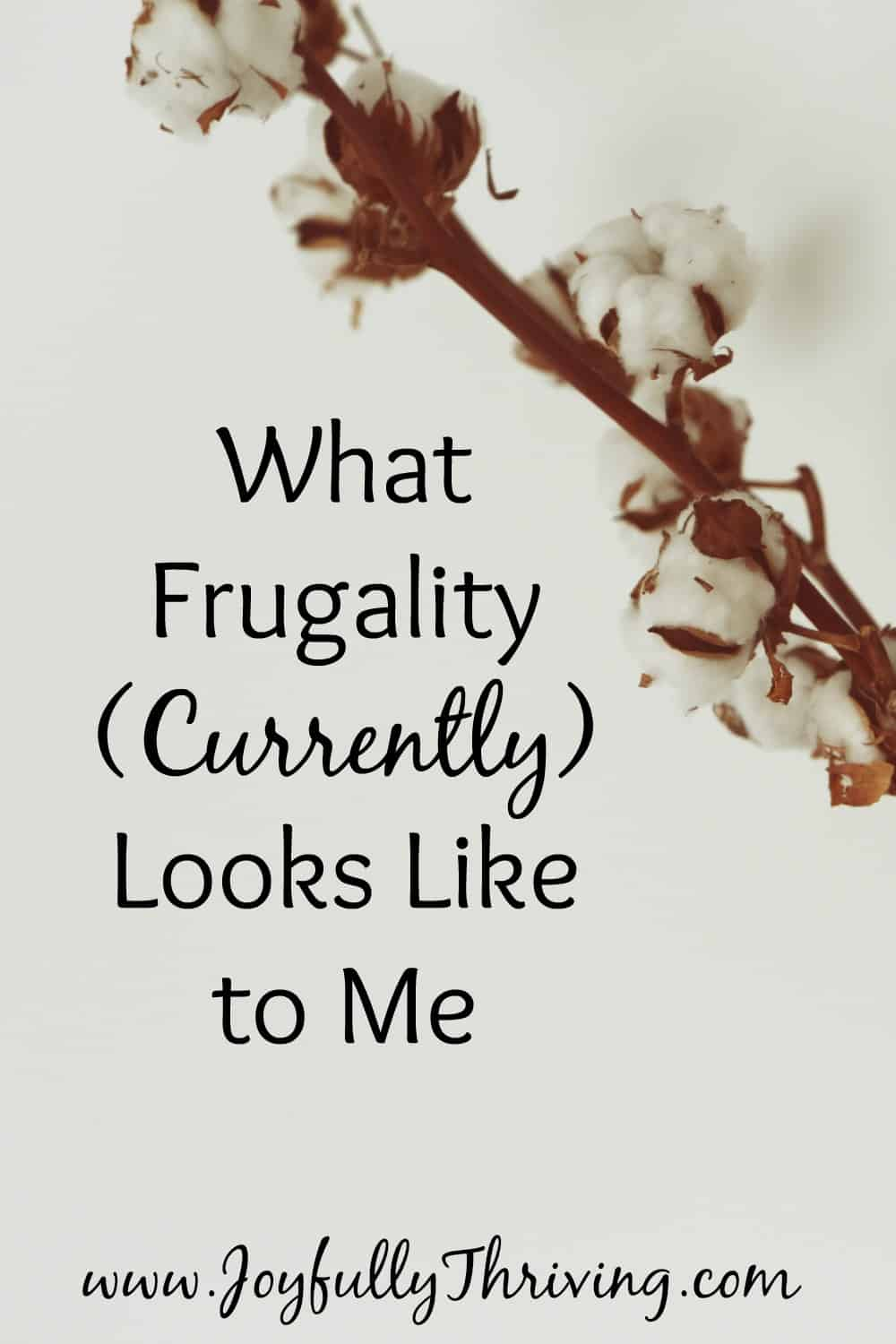 What Frugality (Currently) Looks Like to Me