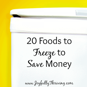 20 Foods to Freeze Square