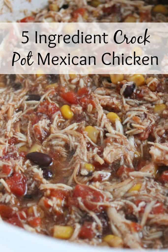 5 Ingredient Crock Pot Mexican Chicken - This is one of our family favorites! It's quick, easy and delicious. Tastes great as leftovers, too!