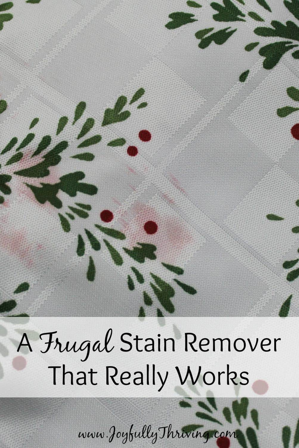 A Frugal Stain Remover That Really Works