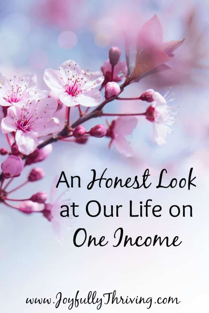 An Honest Look at Our Life on One Income - It's encouraging to read from others who are making this work! Love this!