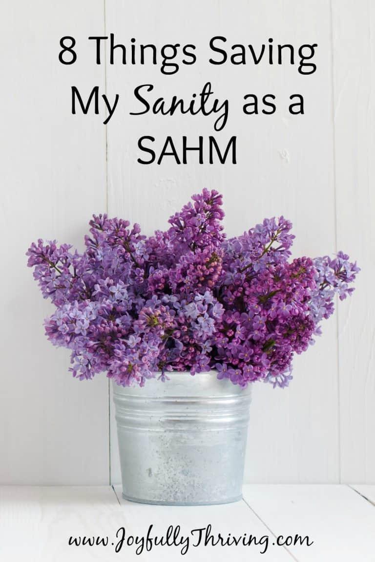 8 Things Saving My Sanity as a SAHM