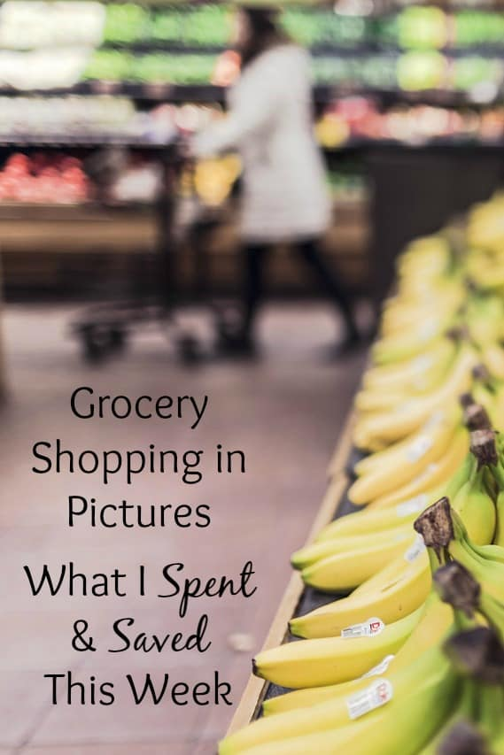 July Grocery Shopping & Some Quick Questions