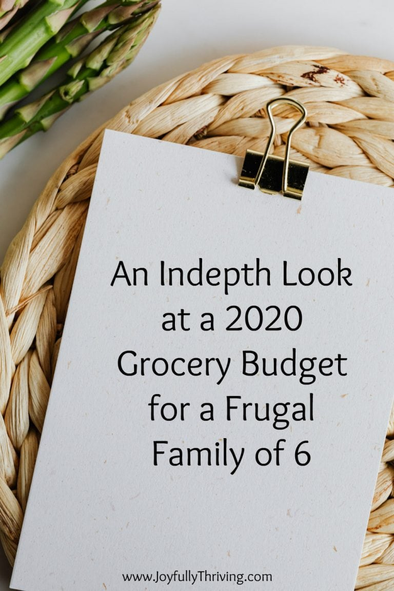 2020 Grocery Budget Totals