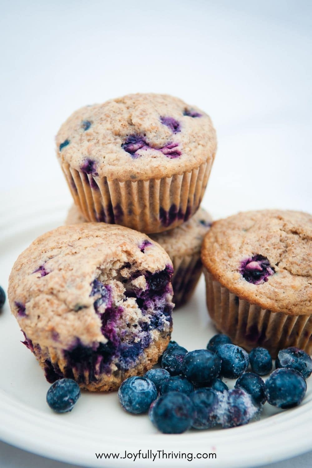 Blueberry muffins and frozen blueberries on a plate